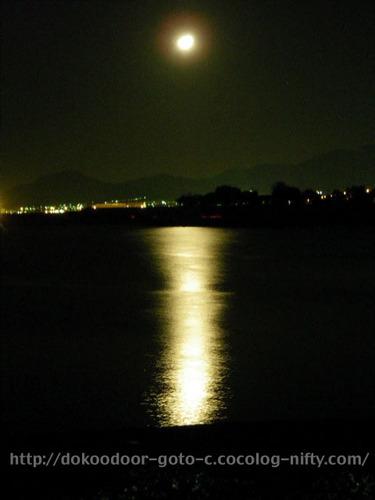 海に溶ける月光